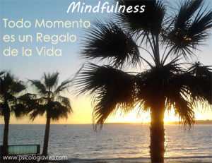 mindfulness pleno